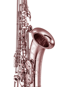 Picture for category Saxofone