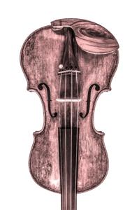 Imagem da categoria Viola