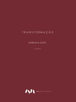Picture of Transformação