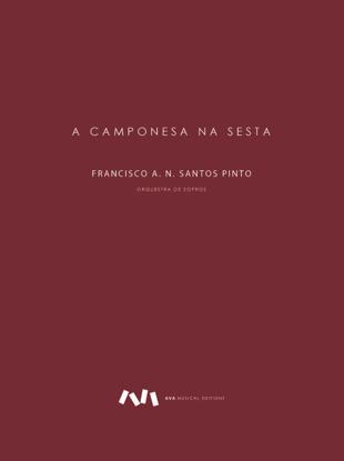 Imagem de A Camponesa na Sesta