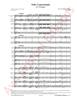 Imagem de Solo Concertante para 2 Trompas e Orquestra de Sopros