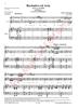 Imagem de Recitativo e Ária - Teneri e cari affettinell'Opera La Morte di Mithridate