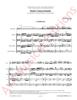 Imagem de Suite Concertante (versão flauta transversal)