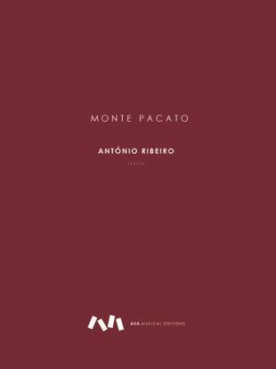 Picture of Monte Pacato